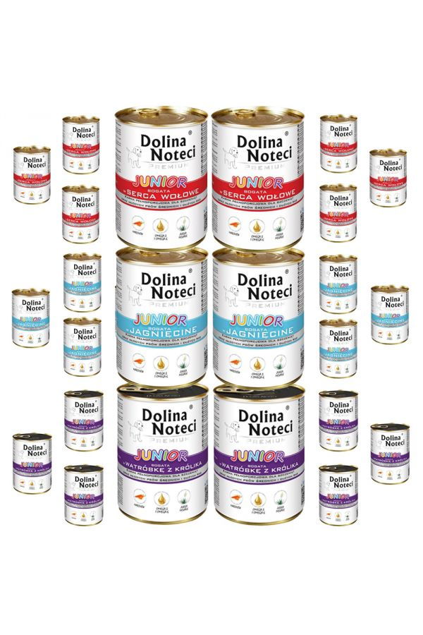 Pakiet Dolina Noteci Premium Mix Smaków Junior 24 x 400 g
