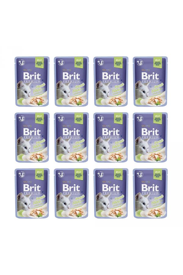 Pakiet Brit Premium Trout Fillets in Jelly Pstrąg Galaretka 12 x 85 g
