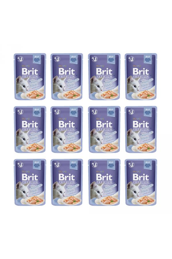 Pakiet Brit Premium Salmon Jelly Fillets Łosoś Galaretka 12 x 85 g
