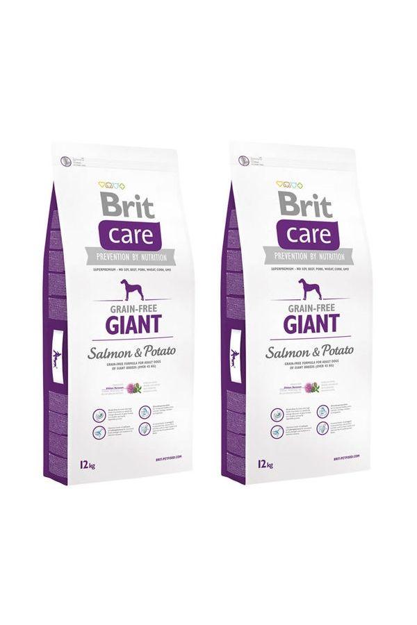 Pakiet Brit Care GrainFree Salmon&Potato Giant Bezzbożowa Karma dla Ras Olbrzymich 2x12 KG
