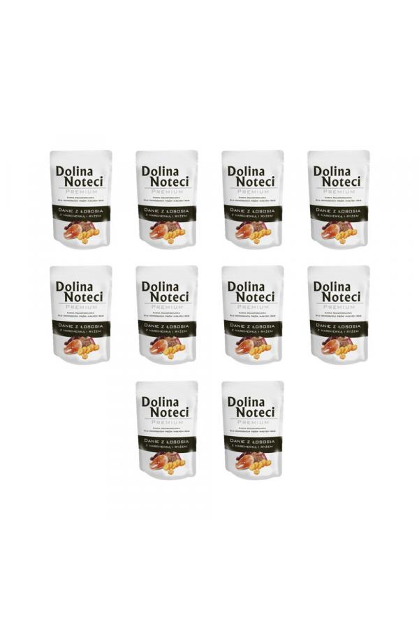 Pakiet Dolina Noteci Premium Danie z Łososia z Marchewką i Ryżem Małe Rasy 10 x 100 g