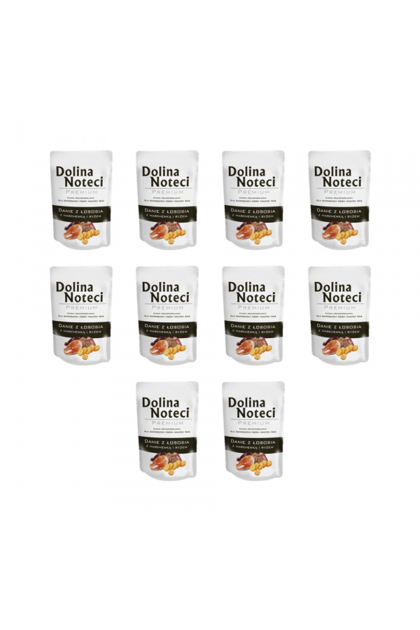 Pakiet Dolina Noteci Premium Danie z Kaczki z Ziemniakami Małe Rasy 10 x 100 g